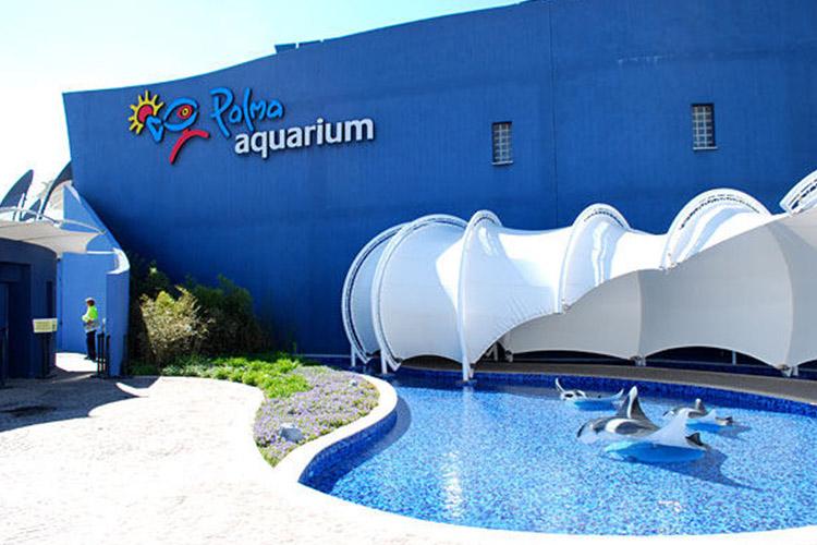 palma-aquarium1